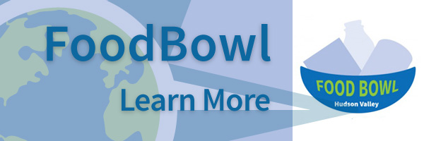 promo-foodBowl